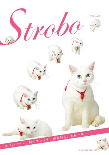 Strobo_vol24
